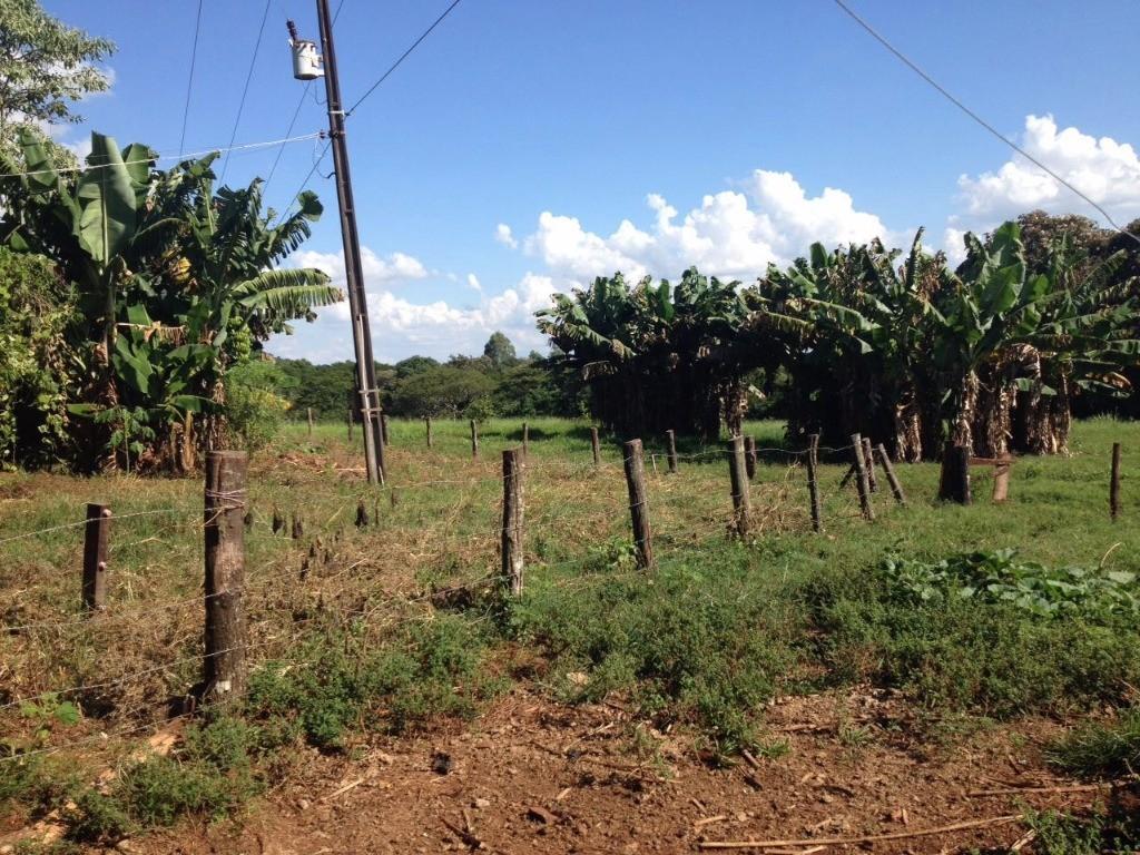 Chácara Rural à venda, Cerro Azul, Lindoeste - CH0004.