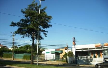 Terreno para Locação - Parque Campolim