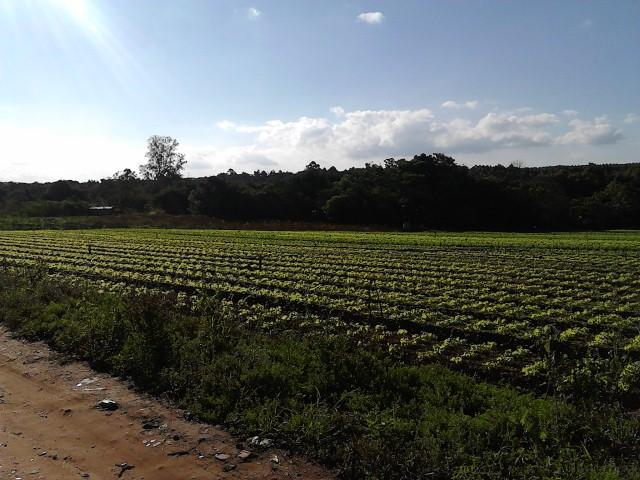Área comercial à Venda - Parque Vitória Régia