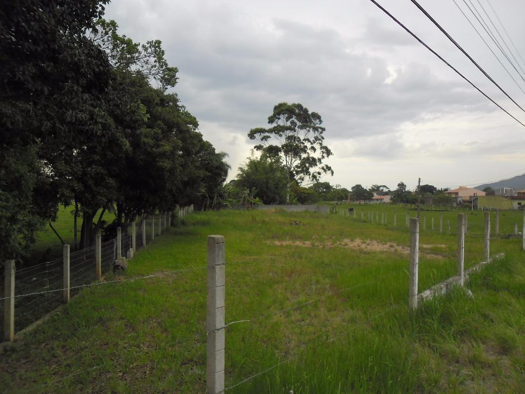 Terreno comercial frente rodovia SC-405