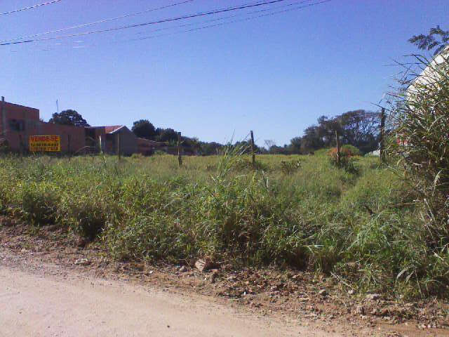 Total Imóveis - Terreno, Jardim Iporanga, Sorocaba - Foto 6