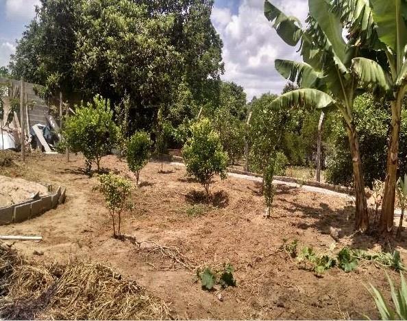 Chácara 2 Dorm, Área Rural, Salto de Pirapora (1325542) - Foto 2