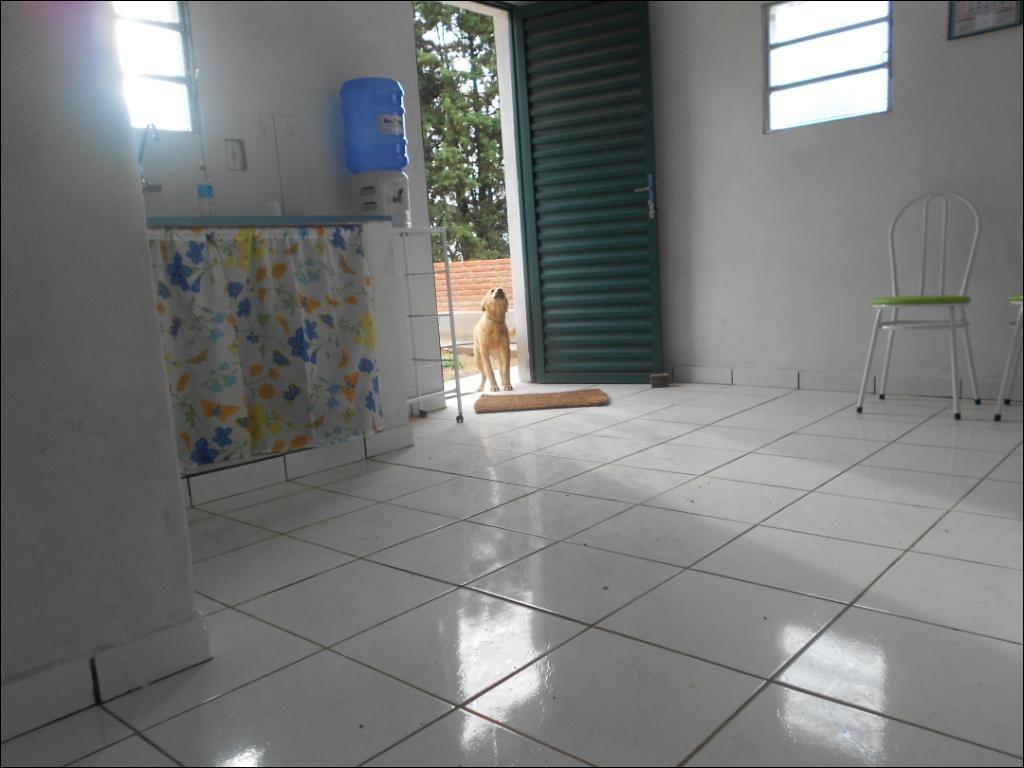 Chácara 1 Dorm, Leites, Piedade (1325336) - Foto 2