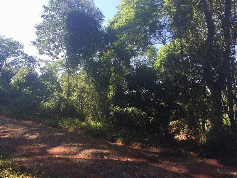 Terreno, Parque Sinai, Santana de Parnaiba (TE0348) - Foto 2