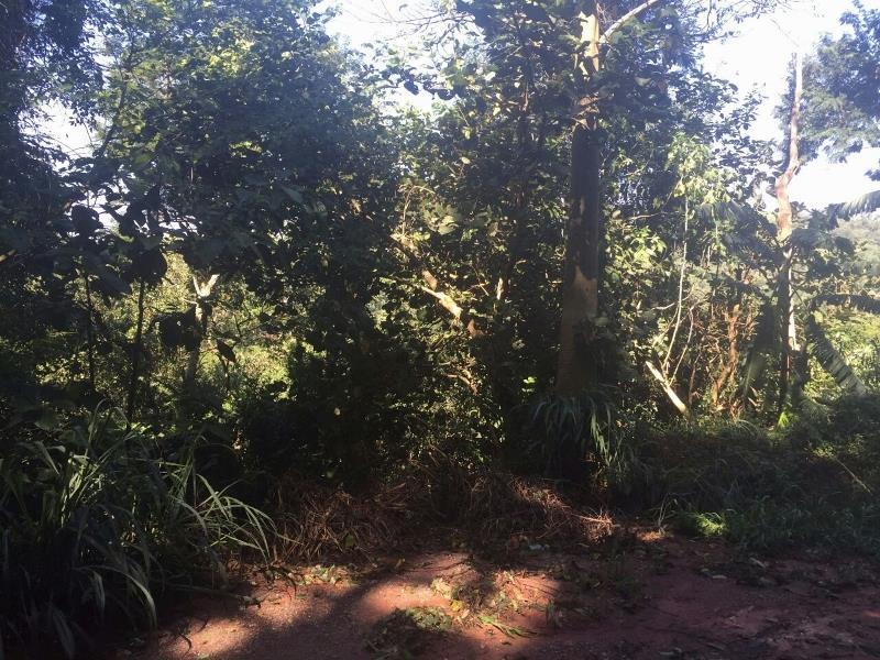 Terreno, Parque Sinai, Santana de Parnaiba (TE0348)