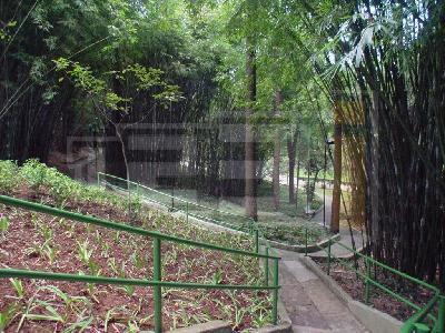 Apto 4 Dorm, Jardim Marajoara, São Paulo (AP11700) - Foto 4