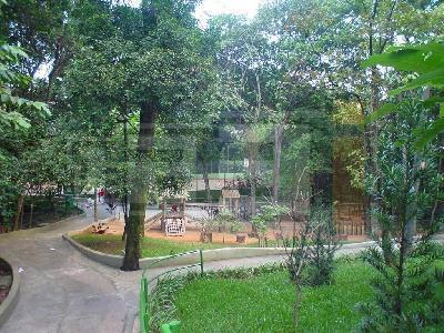 Apto 4 Dorm, Jardim Marajoara, São Paulo (AP11700) - Foto 7