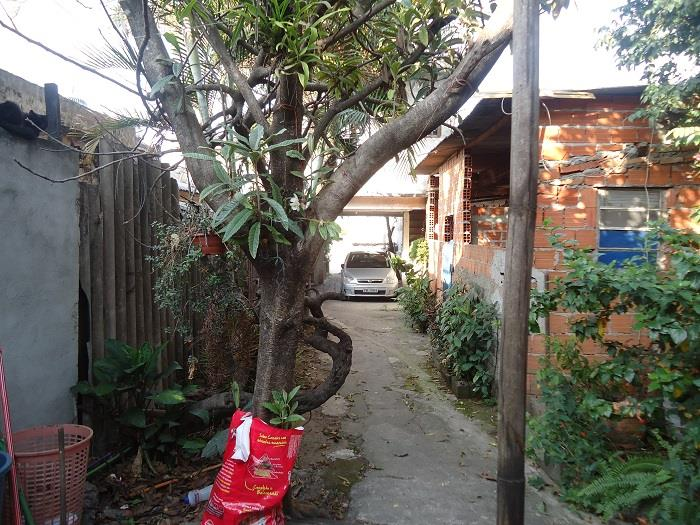 Terreno, Jardim Piratininga, Osasco (TE0019) - Foto 8