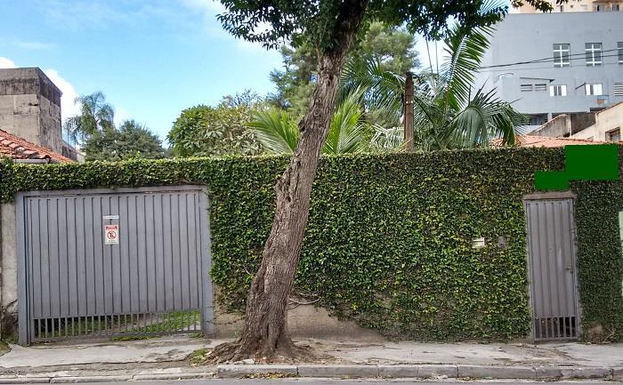 Terreno, Vila Yara, Osasco (TE0011) - Foto 2