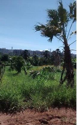 Terreno residencial à venda, Shopping Park, Uberlândia - TE0