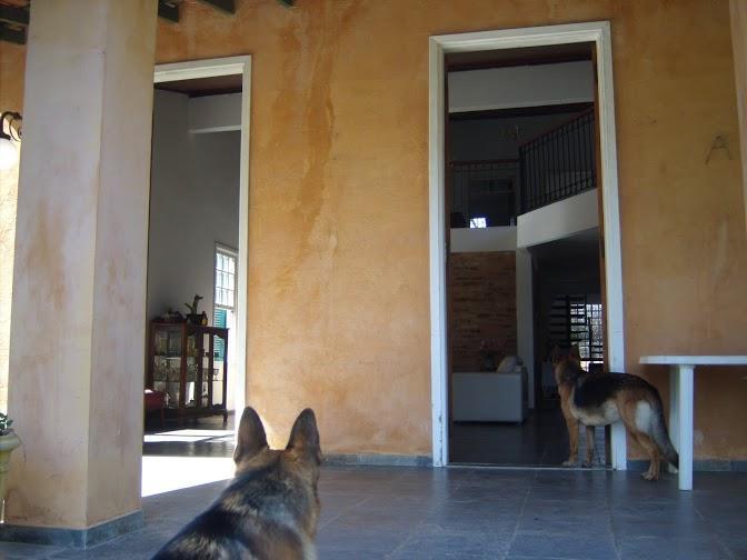 Chácara de 3 dormitórios à venda em Chácara Alpina, Valinhos - SP