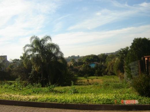 N Grupo - Terreno, Paragem dos Verdes Campos - Foto 8