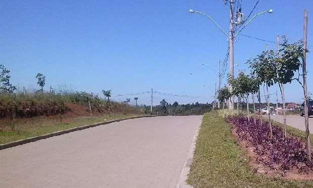 Terreno, Reserva do Arvoredo, Gravataí (TE0949) - Foto 3