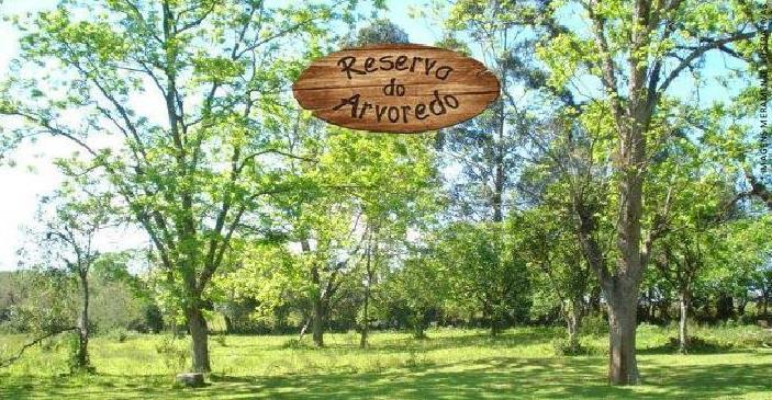 Terreno, Reserva do Arvoredo, Gravataí (TE0949) - Foto 2