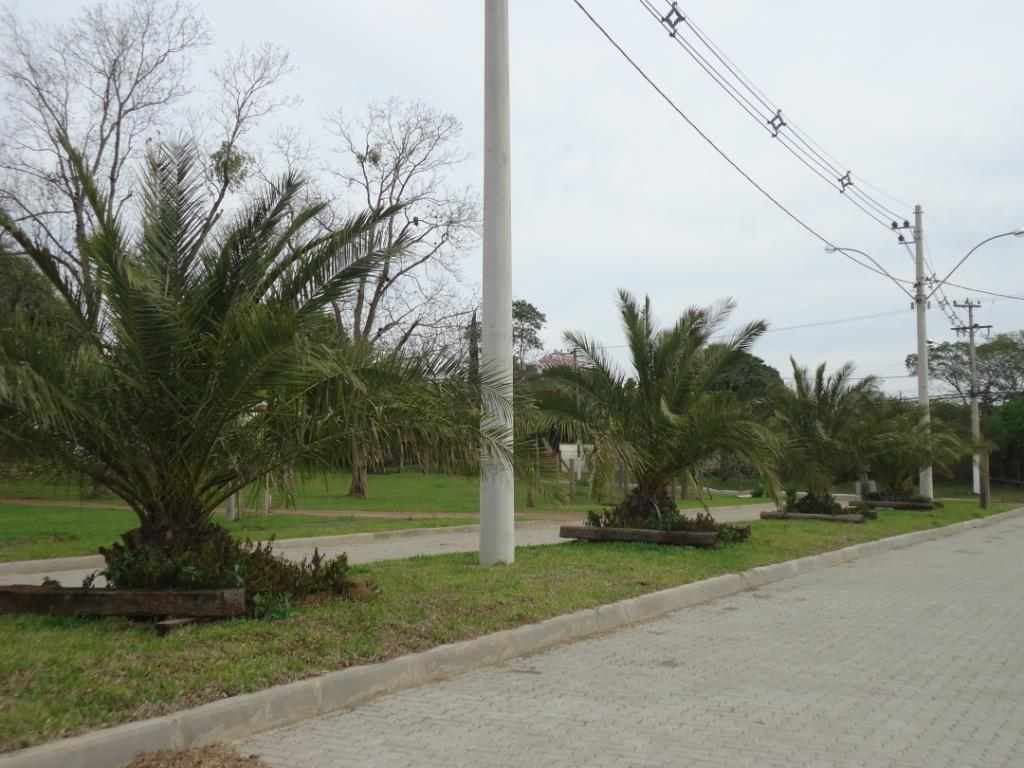 Terreno, Reserva do Arvoredo, Gravataí (TE1184) - Foto 4