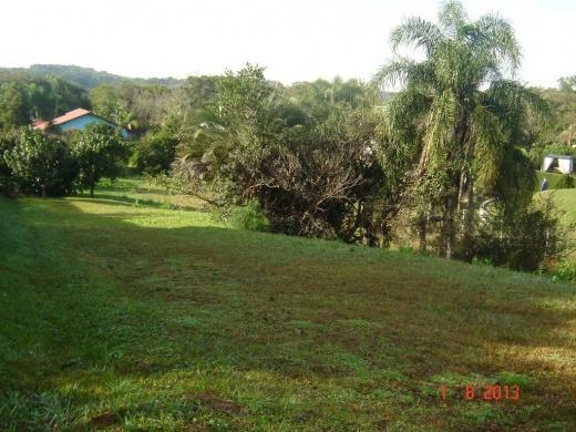 N Grupo - Terreno, Paragem dos Verdes Campos - Foto 6