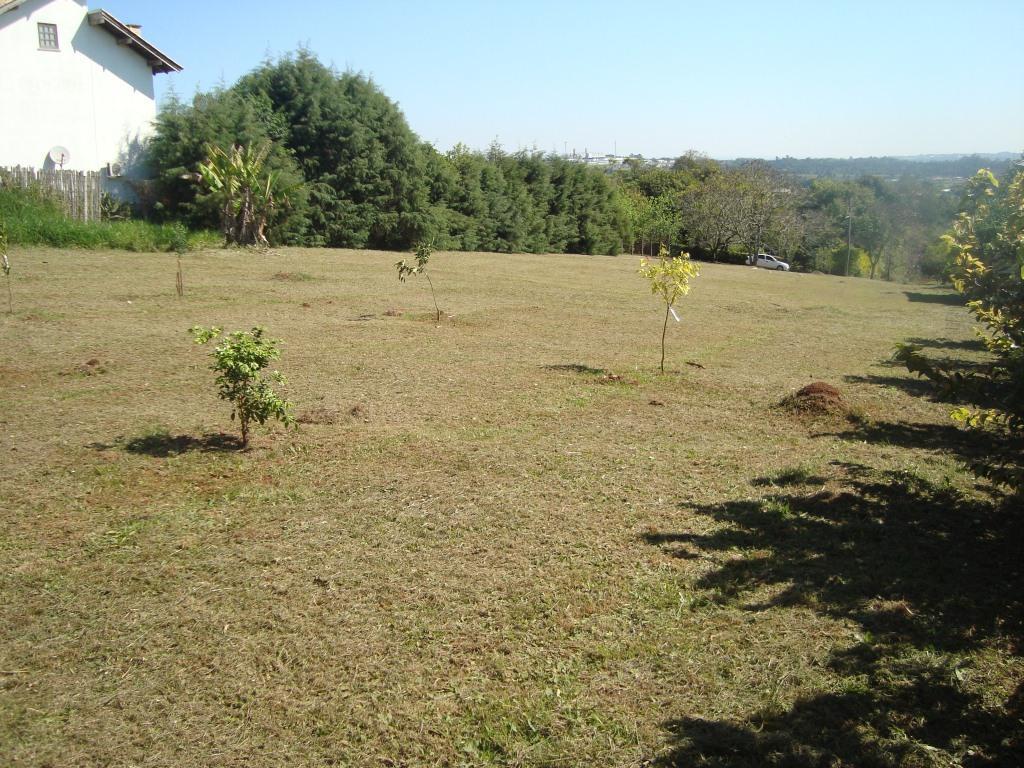 Terreno, Bosques do Sul, Gravataí (TE0236) - Foto 8