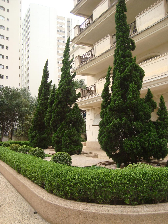 Apto 3 Dorm, Jardim Paulista, São Paulo (AP15096) - Foto 3