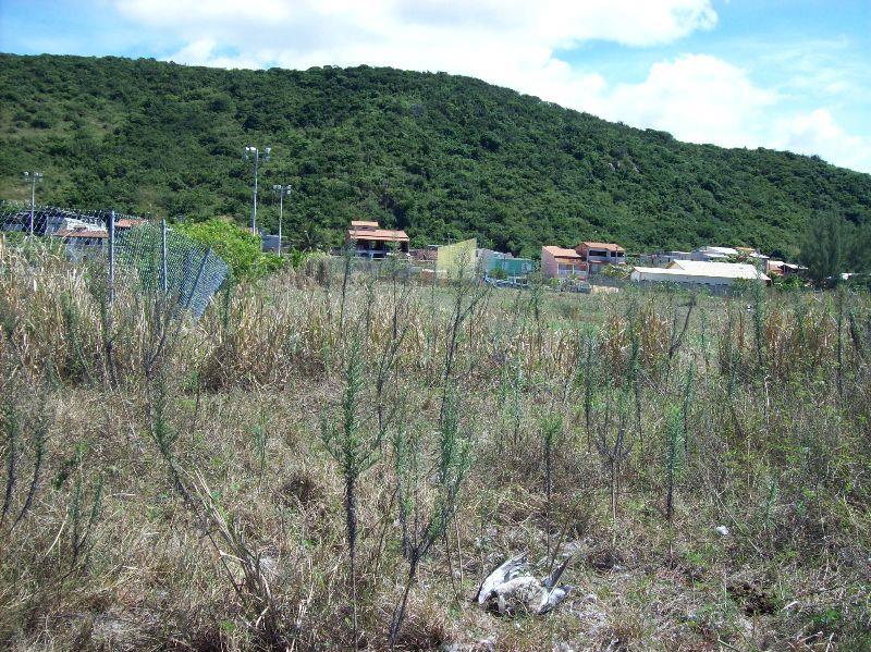 Lote/Terreno em Gamboa  -  Cabo Frio - RJ