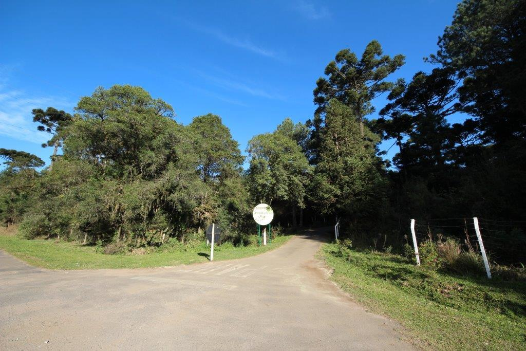 Terreno em Quatro Barras, Quatro Barras - PR