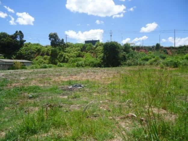 Terreno em Atuba, Curitiba - PR
