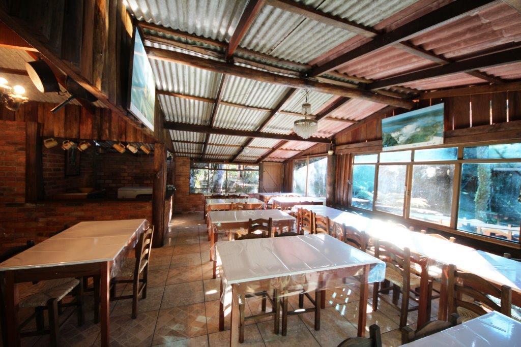 Chácara de 3 dormitórios à venda em Recreio Da Serra, Piraquara - PR