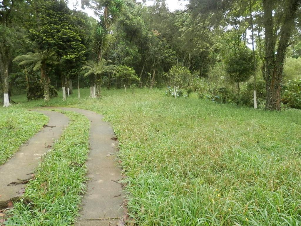 Área em Estados, Fazenda Rio Grande - PR