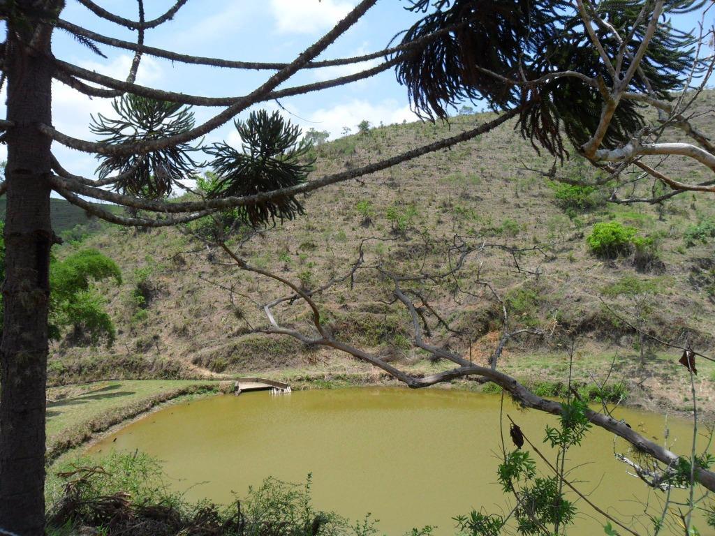 Fazenda / Sítio à venda em Secretário, Petrópolis - RJ - Foto 2