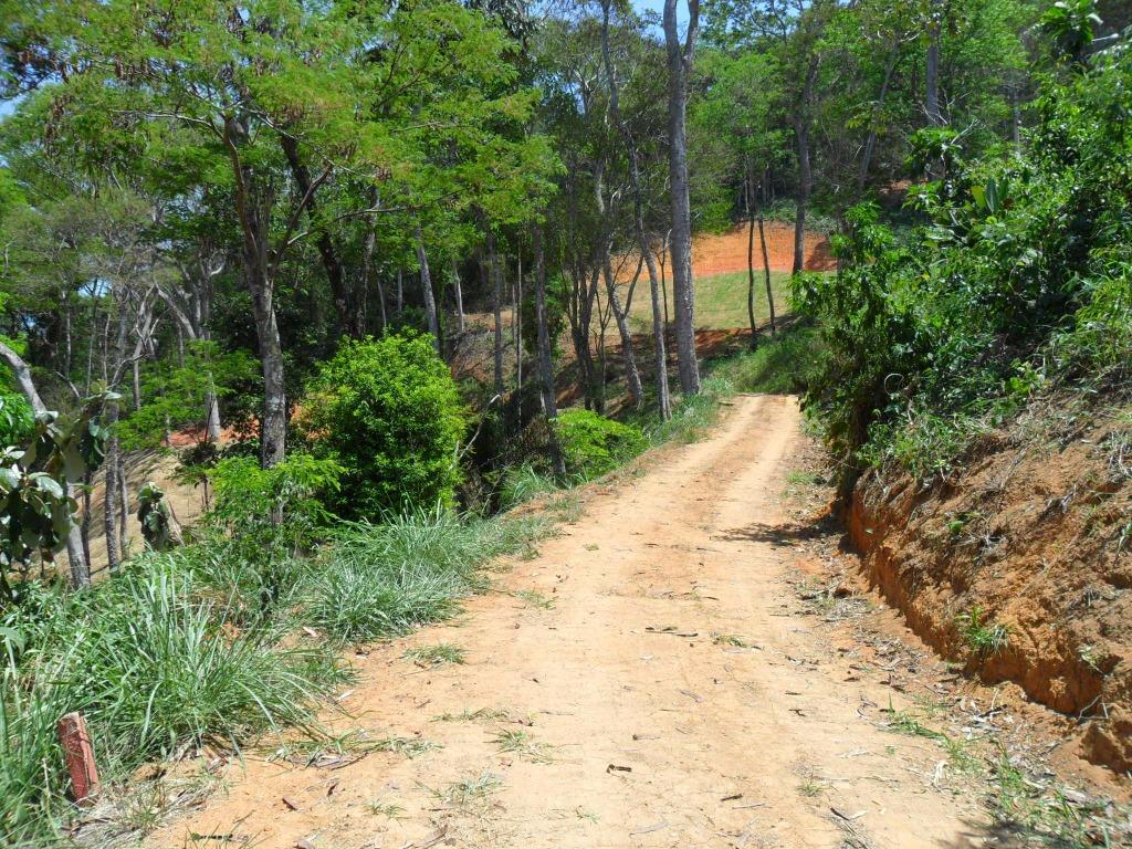 Terreno Residencial à venda em Secretário, Petrópolis - RJ - Foto 8