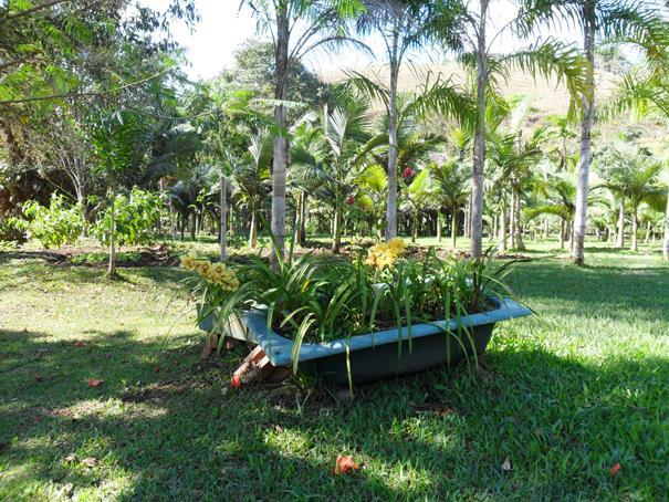 Fazenda / Sítio à venda em Secretário, Petrópolis - Foto 6