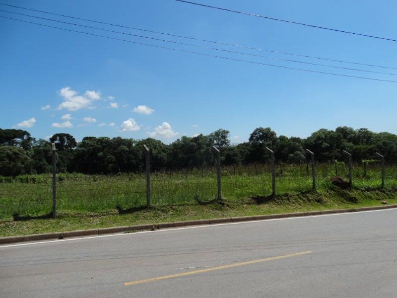 Área à venda em Thomaz Coelho, Araucária - PR