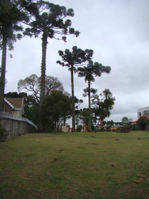 Área em Santa Felicidade, Curitiba - PR