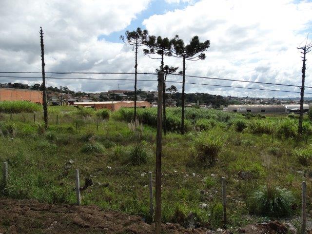 Terreno à venda em Atuba, Colombo - PR