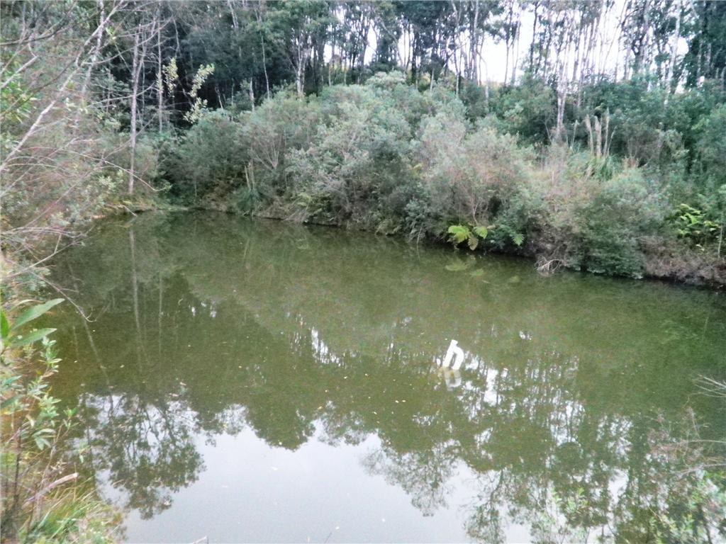 Chácara à Venda - Campestre da Faxina