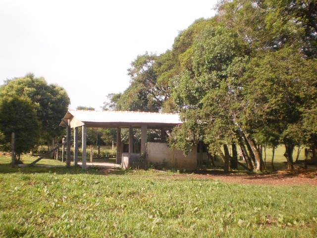 Área comercial à Venda - Campo Largo da Roseira