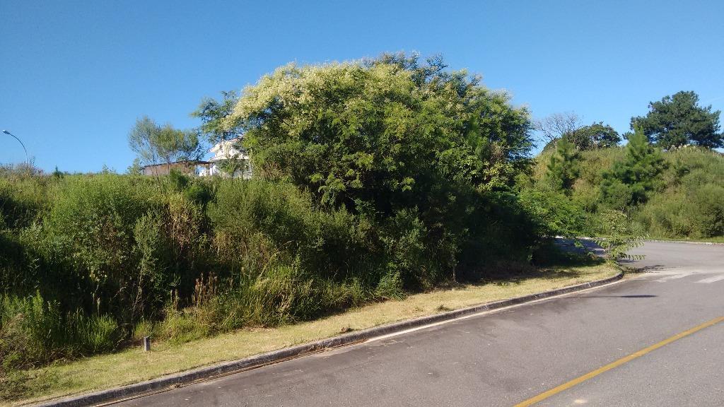 Terreno, Roçado, São José (TE0239) - Foto 9