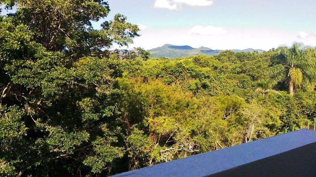 Apto 2 Dorm, Canasvieiras, Florianópolis (AP0560) - Foto 2