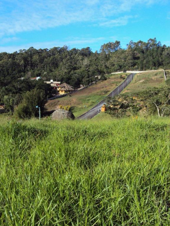 Terreno, Cacupé, Florianópolis (TE0216) - Foto 2