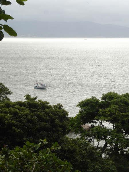 Terreno, Cacupé, Florianópolis (TE0219) - Foto 15