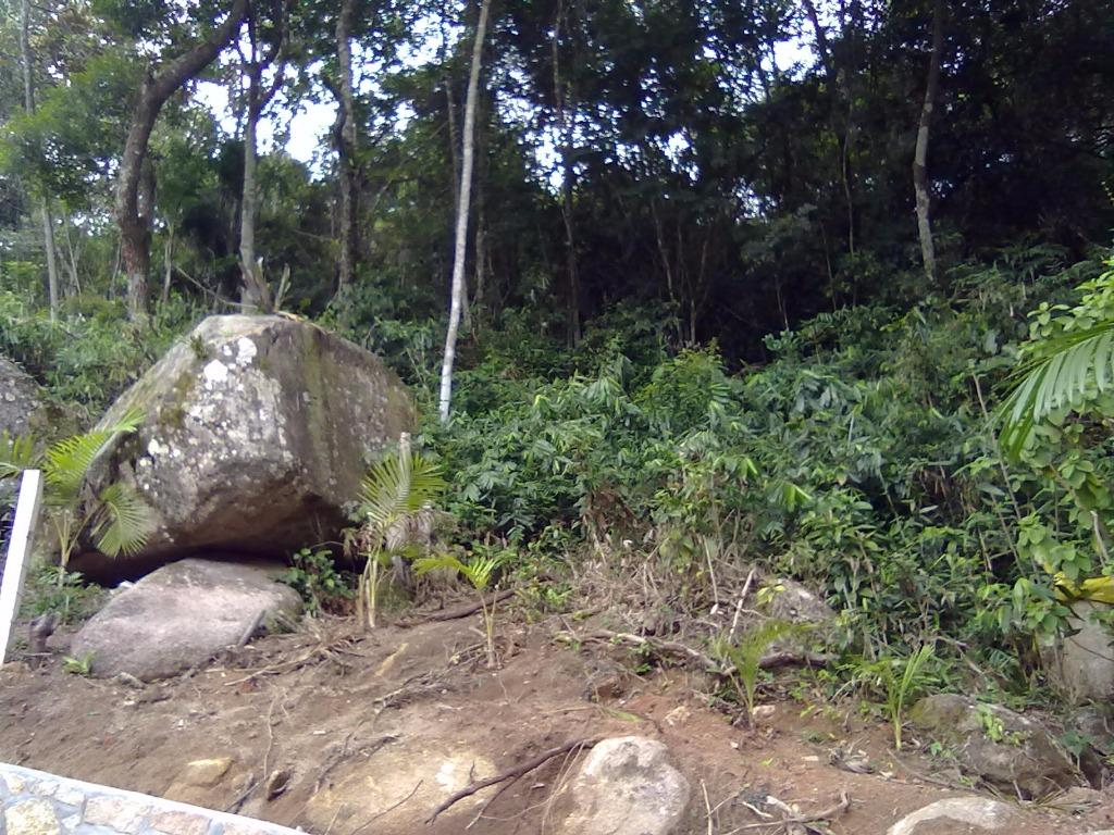 Terreno, Sambaqui, Florianópolis (TE0247) - Foto 6