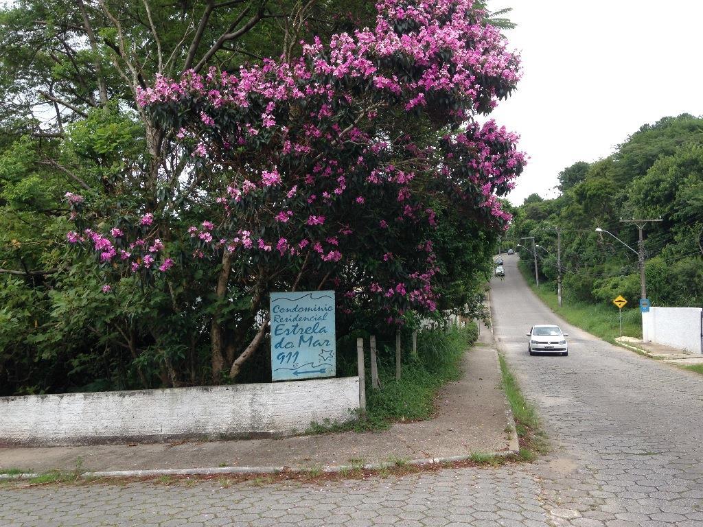 Terreno, Cacupé, Florianópolis (TE0237) - Foto 4