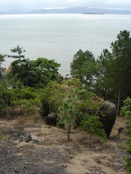 Terreno, Cacupé, Florianópolis (TE0219) - Foto 17