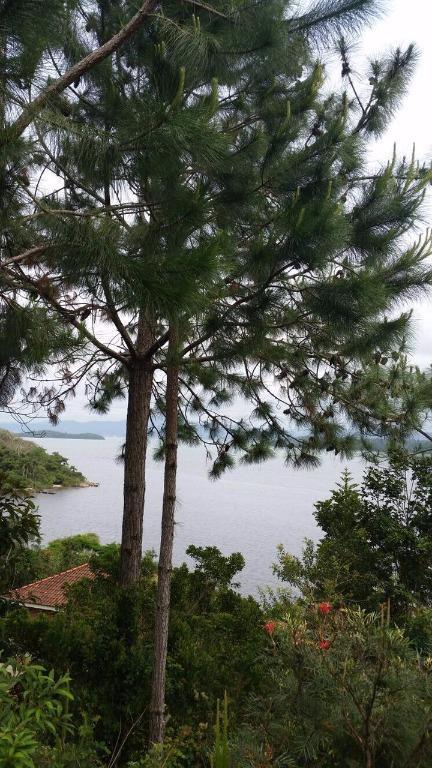 Terreno, Sambaqui, Florianópolis (TE0262) - Foto 2