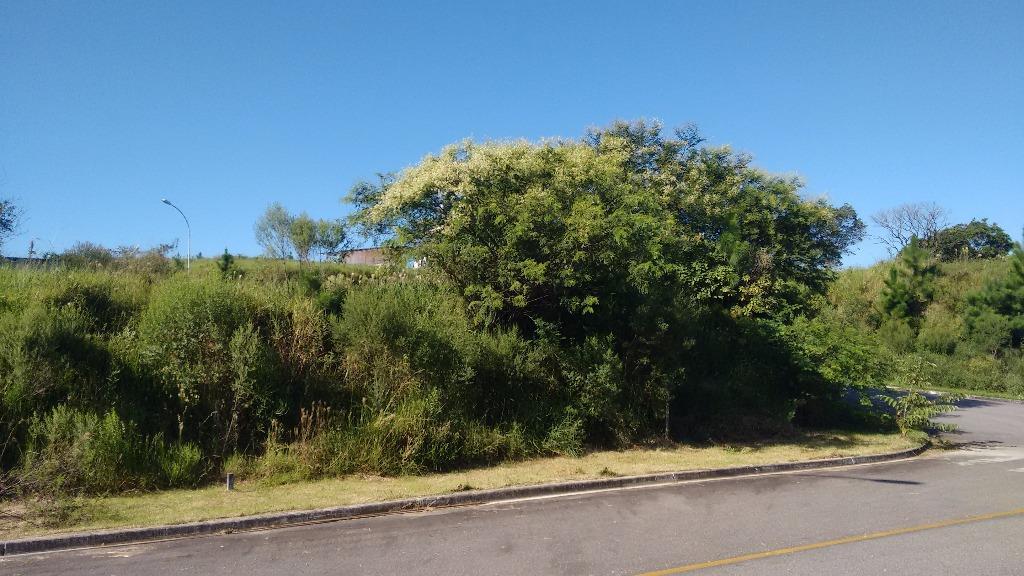 Terreno, Roçado, São José (TE0239) - Foto 10