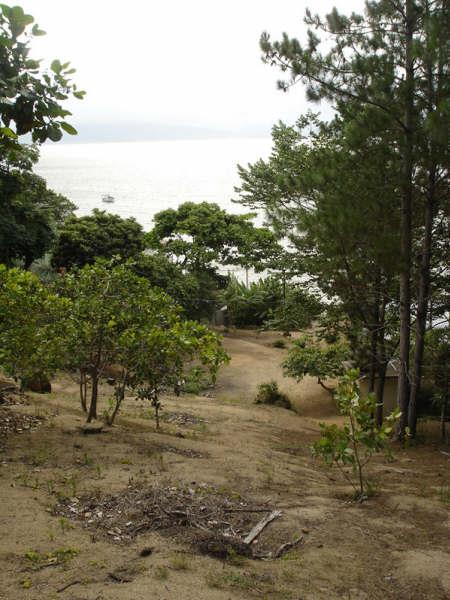Terreno, Cacupé, Florianópolis (TE0219) - Foto 14