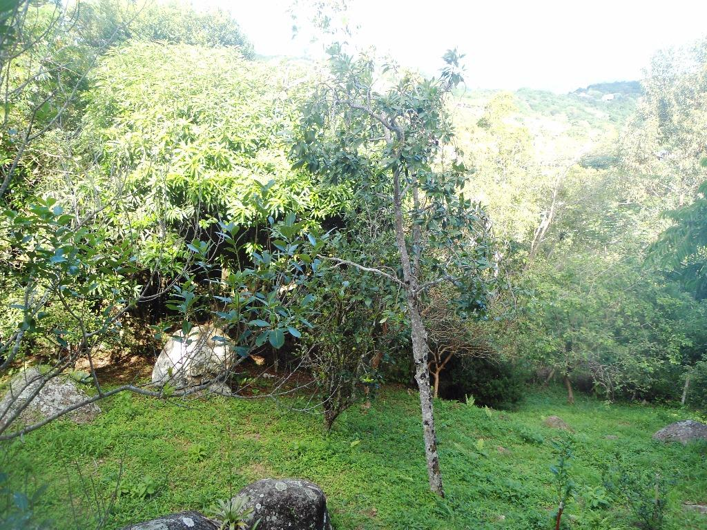 Casa 2 Dorm, Sambaqui, Florianópolis (CA0448) - Foto 16