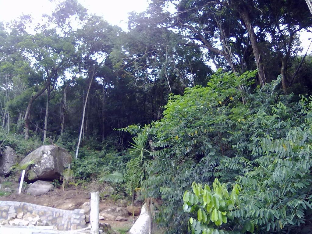 Terreno, Sambaqui, Florianópolis (TE0247) - Foto 12