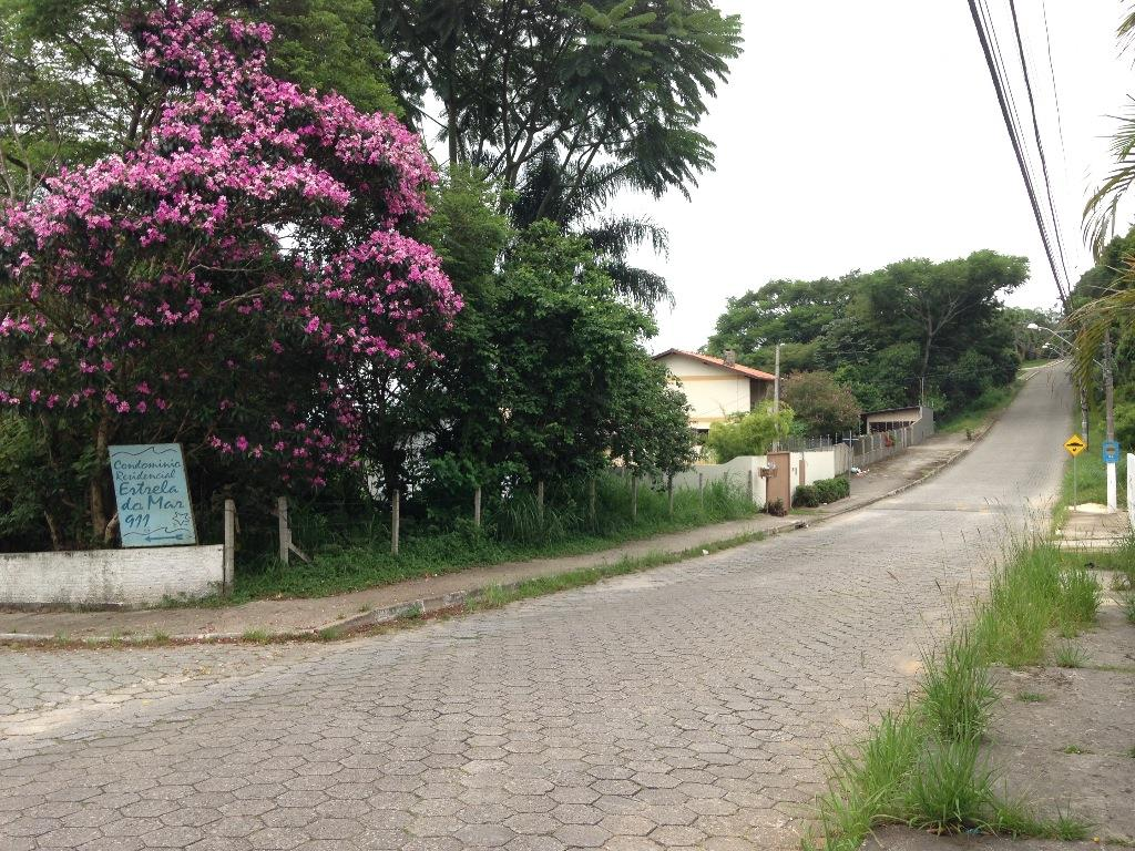 Terreno, Cacupé, Florianópolis (TE0237) - Foto 2