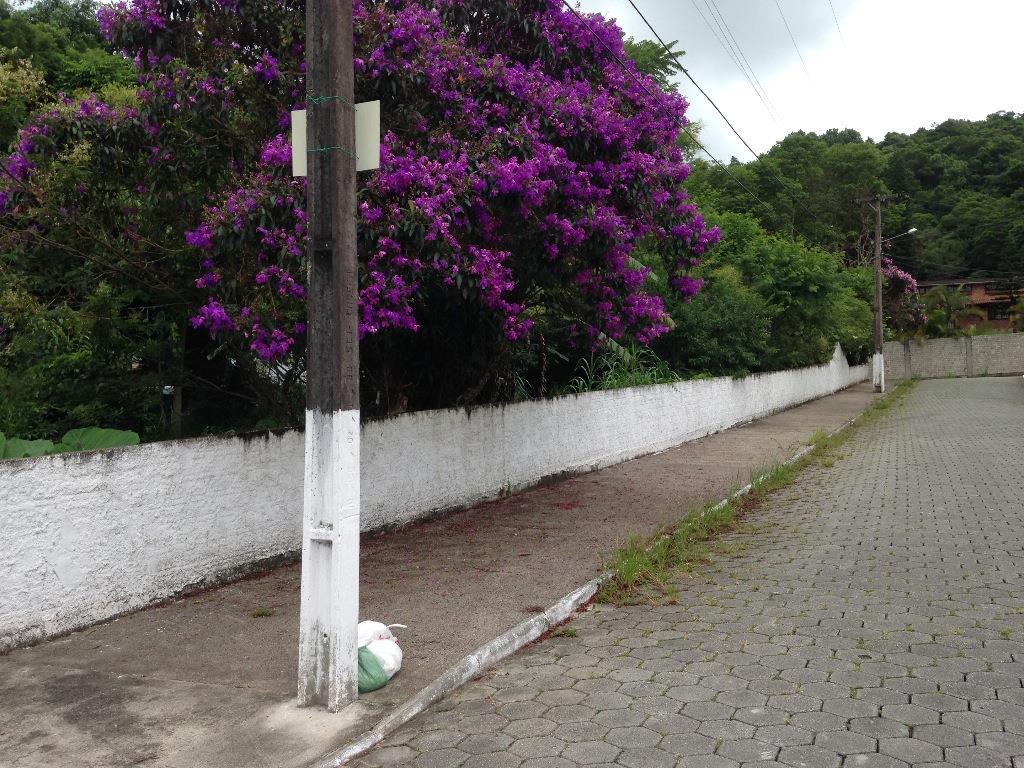 Terreno, Cacupé, Florianópolis (TE0237) - Foto 5