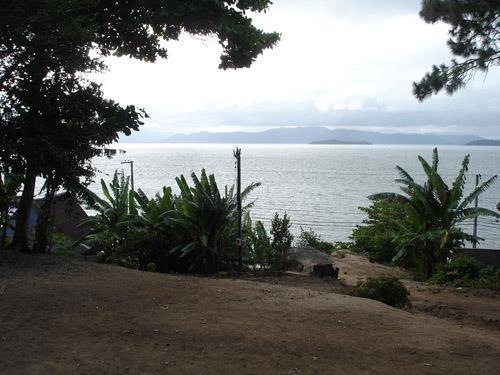 Terreno, Cacupé, Florianópolis (TE0219) - Foto 2